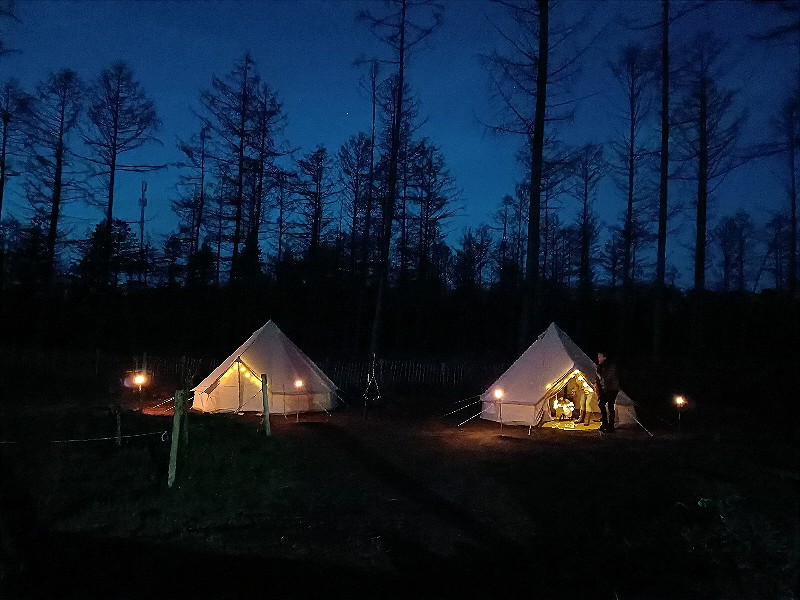 Hoe uniek: slapen in een tipi-tent op de Veluwe, met de husky's als jullie waakhonden!