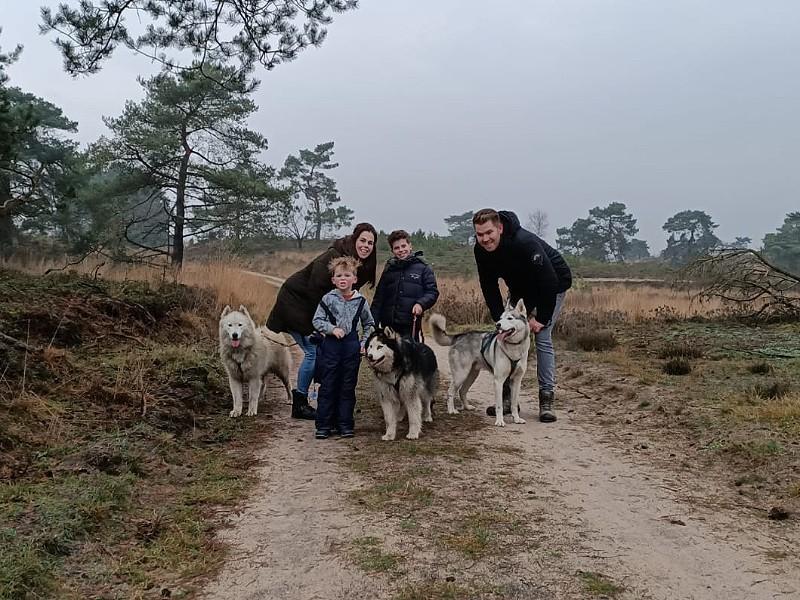 Een gezonde hike met de husky's....lekker in de buitenlucht!